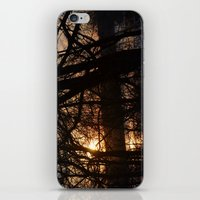 Winter Sun and River iPhone & iPod Skin