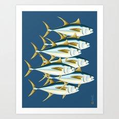 School of Tuna, fish Art Print
