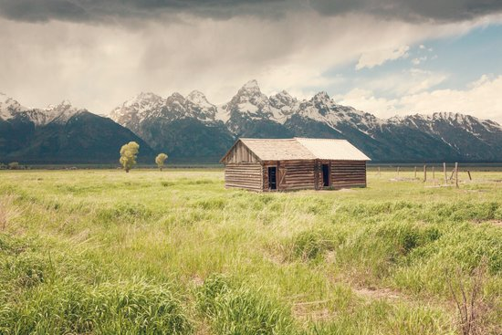 Summer in the Tetons Art Print