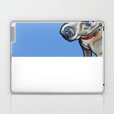 Fenway Laptop & iPad Skin