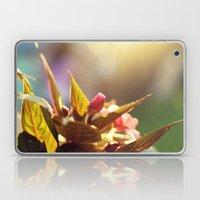 Summer Light II Laptop & iPad Skin