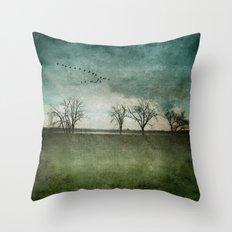 Onondaga Lake Park - Susan Weller Throw Pillow