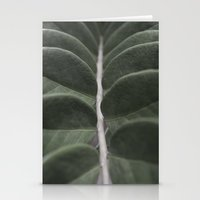 Money Plant Stationery Cards