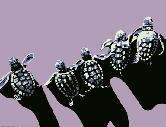 five turtles Art Print