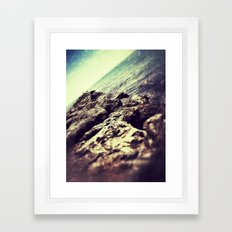 ROCKY ROAD FISH Framed Art Print