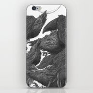 Sunset Of Crow III iPhone & iPod Skin