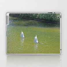No more Swan Lake this season, please Laptop & iPad Skin