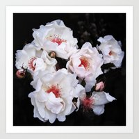 Flower (Magnificent) Art Print