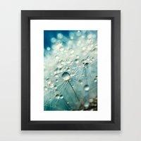 Dandelion Starburst Framed Art Print