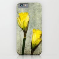 iPhone & iPod Case featuring Daffodil's by The ShutterbugEye