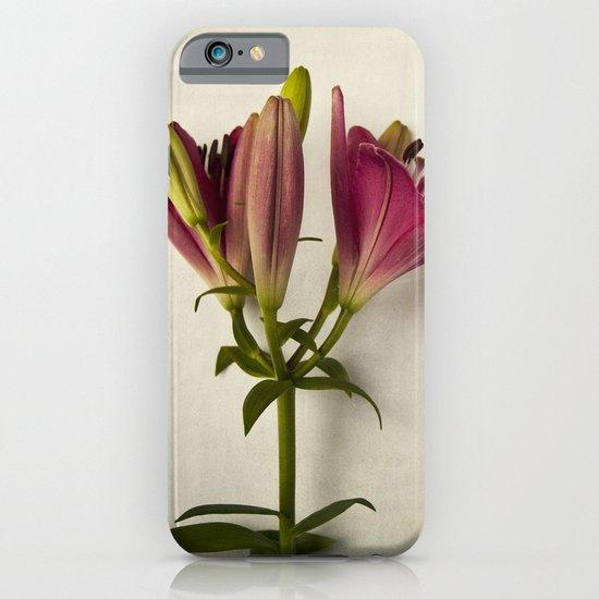 Botanical Lily No. 7719 iPhone & iPod Case