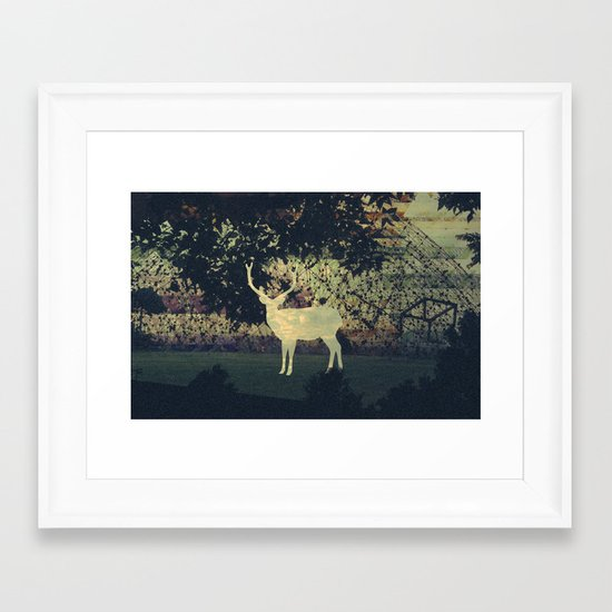 Deer Framed Art Print