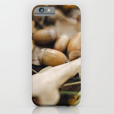 Acorns Slim Case iPhone 6s