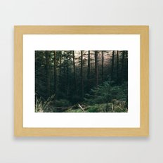 COLD PINES Framed Art Print