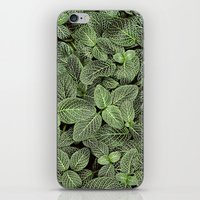 Just Green iPhone & iPod Skin