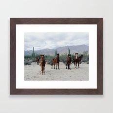 Bahía De Los Ángeles W… Framed Art Print