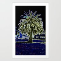 Magic Night With Palm Tr… Art Print
