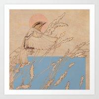 Myshkin Sparrow Art Print