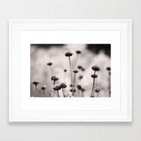 3, 2, 1 Framed Art Print