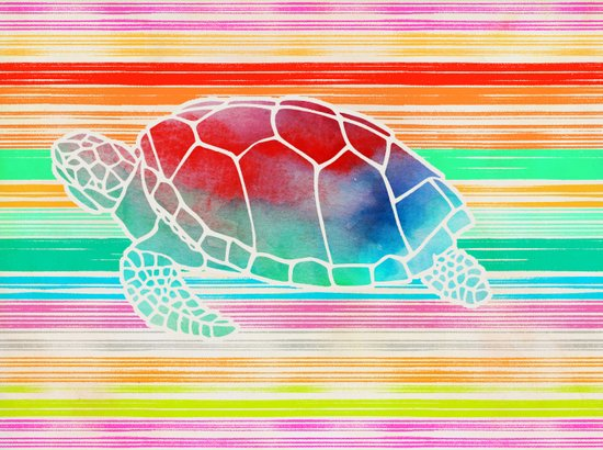 Turtle Collage by Garima and Jacqueline Canvas Print