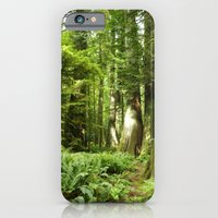 Cathedral Grove iPhone 6 Slim Case