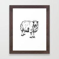 Sheep Sheep. Framed Art Print