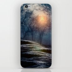 From small beginnings and big endings. iPhone & iPod Skin