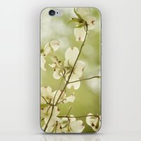 Stirring Up The Bees iPhone & iPod Skin
