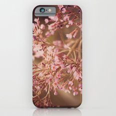 Sweetest Dreams iPhone 6 Slim Case