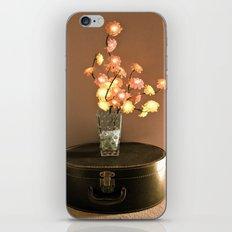 Stationary Traveler  iPhone & iPod Skin