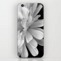 Abstract Petals iPhone & iPod Skin
