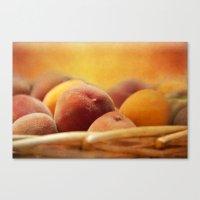 Fuzzy Peach Canvas Print