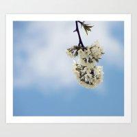 White & Blue Art Print