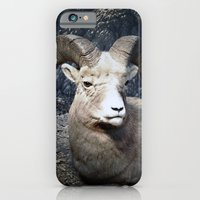 iPhone & iPod Case featuring Tom Feiler Mountain Goat by Tom Feiler