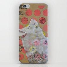 pig iPhone & iPod Skin