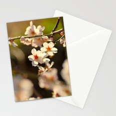 Winter spring. Almond flowers Stationery Cards