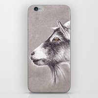 Little Goat iPhone & iPod Skin