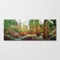 Winter Gardens. Canvas Print
