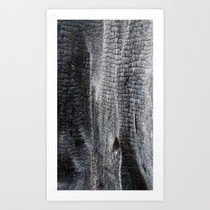 Alligator Scales (Charred Wood) Art Print