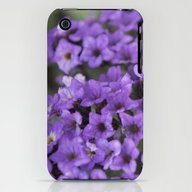 iPhone & iPod Case featuring Spring Flowers Series 59 by Sarah Shanely Photog…