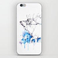 Elk's Whisper II iPhone & iPod Skin
