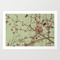 VINTAGE NATURE II Art Print