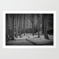 Black and White of a Woodland Path in Cades Cove Art Print