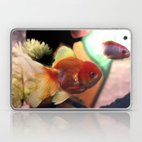 Freshwater Gold Fish Laptop & iPad Skin