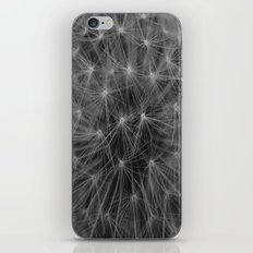 Constellations iPhone & iPod Skin