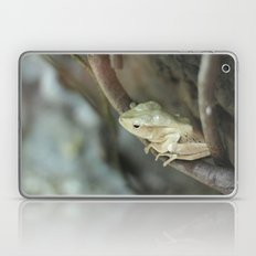 Froggy style Laptop & iPad Skin