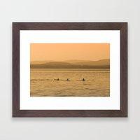 Orca Play Framed Art Print