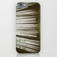iPhone & iPod Case featuring Rainforest of the Pacific Northwest by Melanie McKay