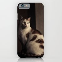 iPhone & iPod Case featuring Cat by Ni.Ca.