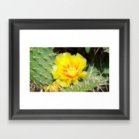 Prickly Yellow Beauty Framed Art Print